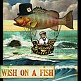 Wish On a Fish