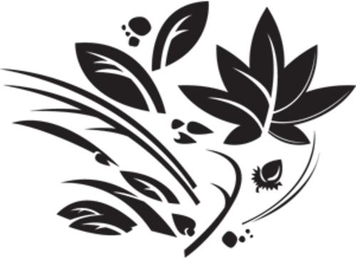 Thumb_leafypod