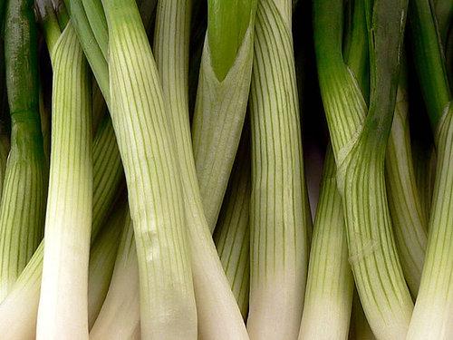 Salad_onions4